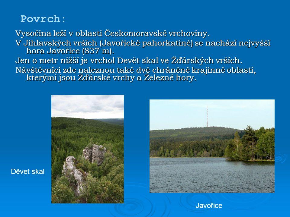 Vysočina leží v oblasti Českomoravské vrchoviny. V Jihlavských vrších (Javořické pahorkatině) se nachází nejvyšší hora Javořice (837 m). Jen o metr ni