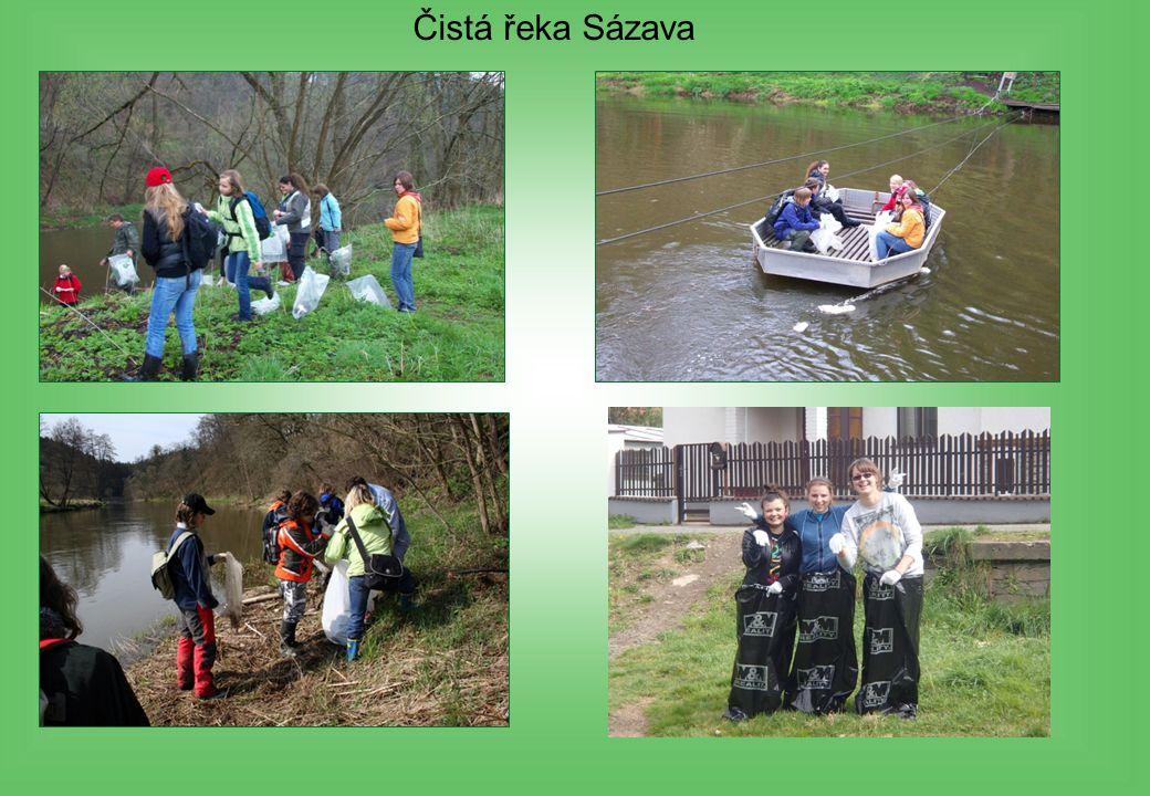 Čistá řeka Sázava