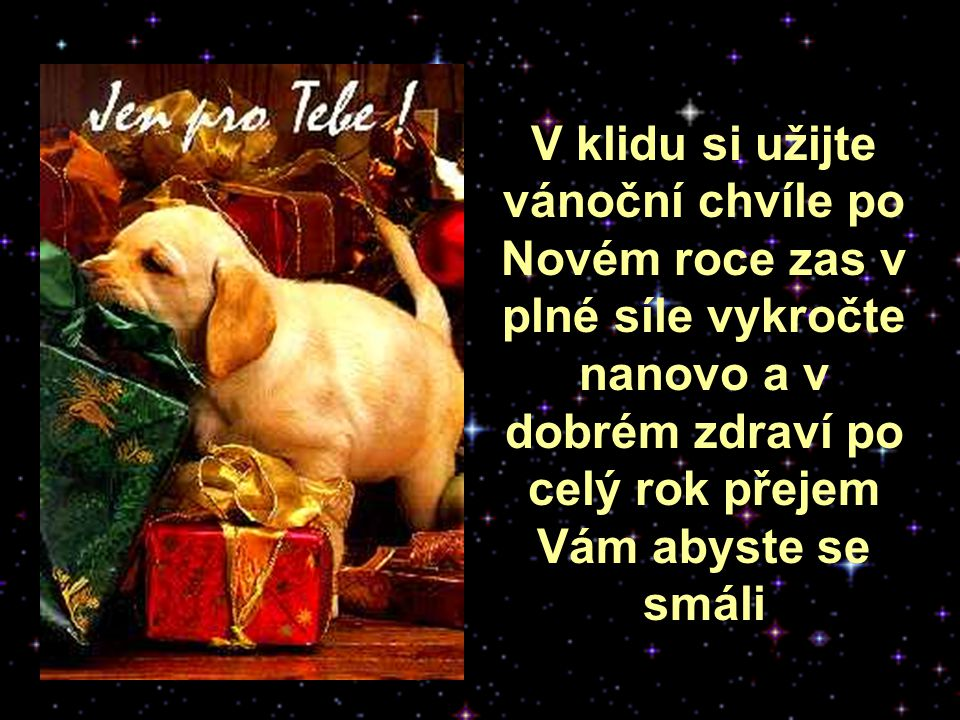 V klidu si užijte vánoční chvíle po Novém roce zas v plné síle vykročte nanovo a v dobrém zdraví po celý rok přejem Vám abyste se smáli