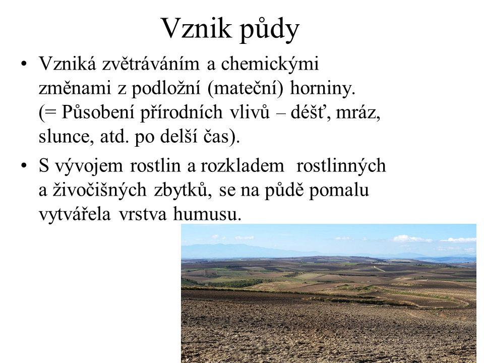 Vznik půdy Vzniká zvětráváním a chemickými změnami z podložní (mateční) horniny. (= Působení přírodních vlivů – déšť, mráz, slunce, atd. po delší čas)