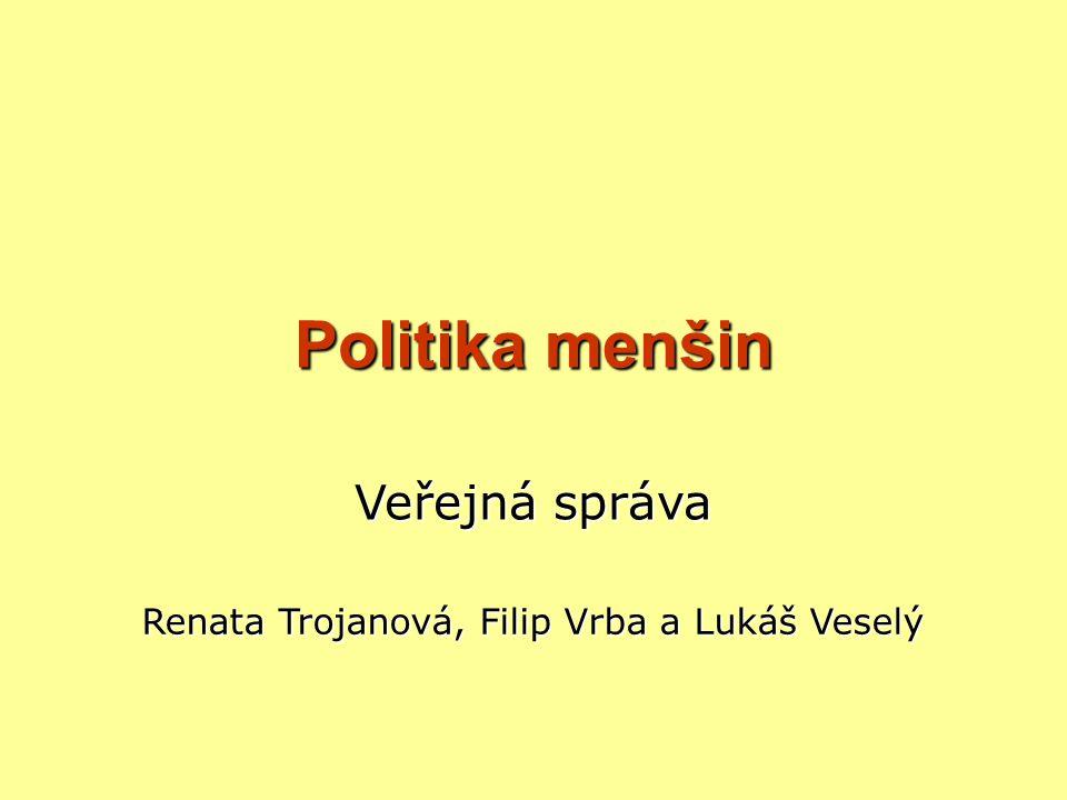 OSNOVA PREZENTACE Základní informace Politika menšin v ČR Statistiky Menšiny v zahraničí a jejich postavení Kauza Vítkov