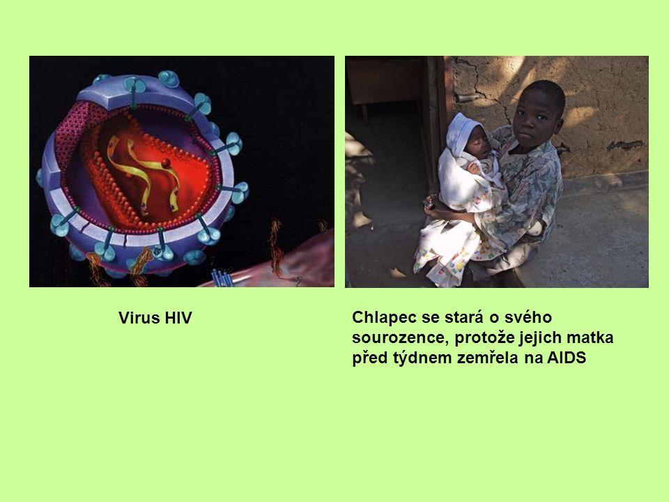 Virus HIV Chlapec se stará o svého sourozence, protože jejich matka před týdnem zemřela na AIDS