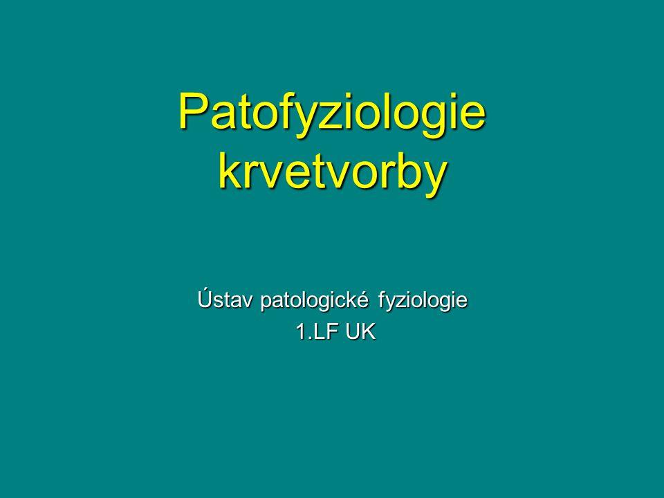 Patofyziologie krvetvorby Ústav patologické fyziologie 1.LF UK 1.LF UK