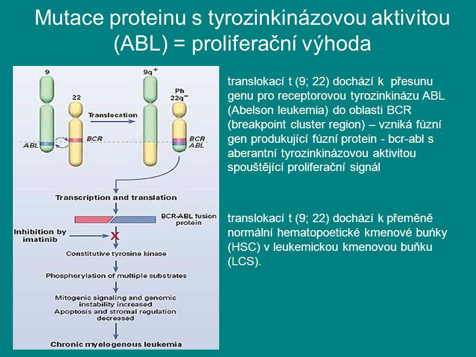 Mutace proteinu s tyrozinkinázovou aktivitou (ABL) = proliferační výhoda translokací t (9; 22) dochází k přesunu genu pro receptorovou tyrozinkinázu A
