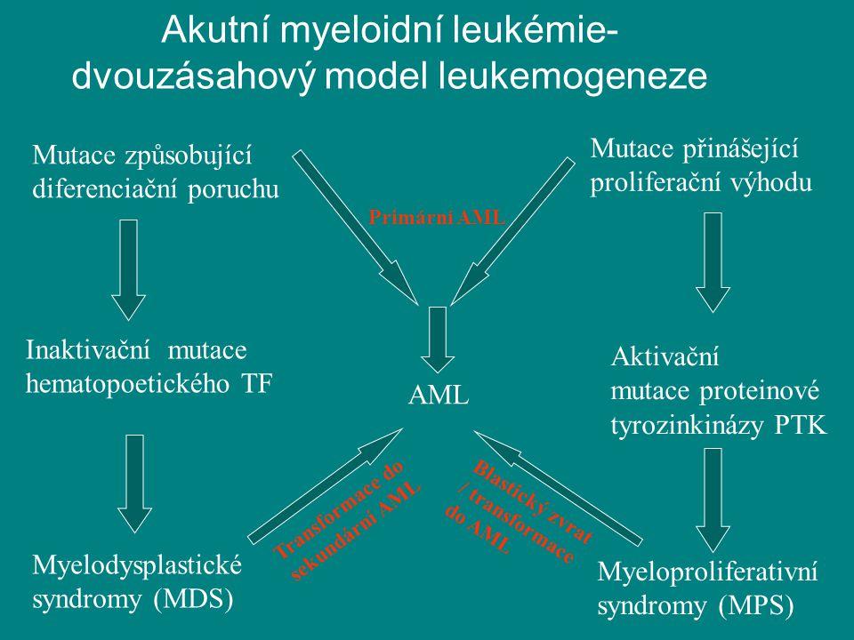 Mutace způsobující diferenciační poruchu Inaktivační mutace hematopoetického TF Myelodysplastické syndromy (MDS) Myeloproliferativní syndromy (MPS) Ak