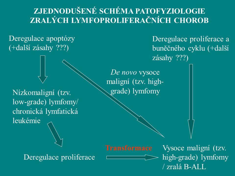 Deregulace apoptózy (+další zásahy ???) Nízkomaligní (tzv. low-grade) lymfomy/ chronická lymfatická leukémie Deregulace proliferace a buněčného cyklu