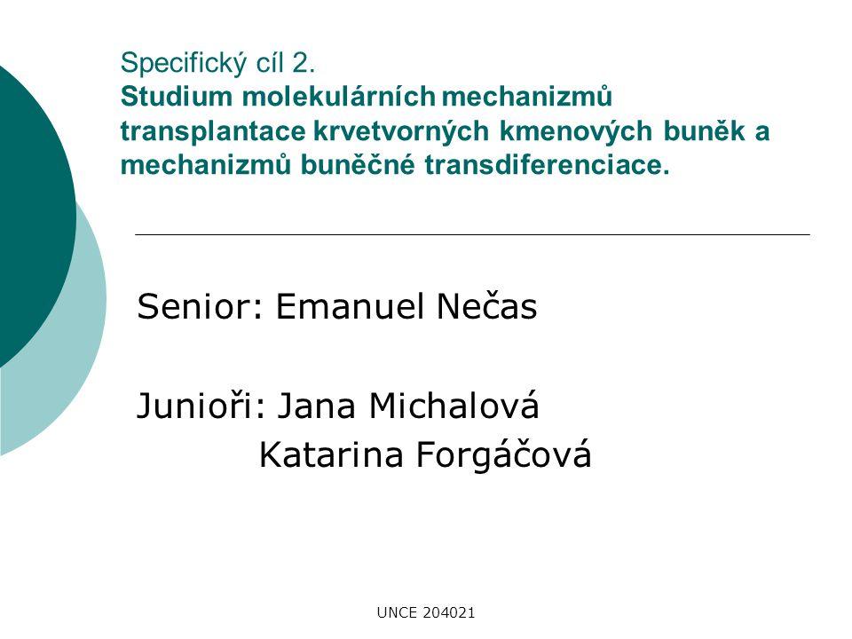 UNCE 204021 Specifický cíl 2. Studium molekulárních mechanizmů transplantace krvetvorných kmenových buněk a mechanizmů buněčné transdiferenciace. Seni