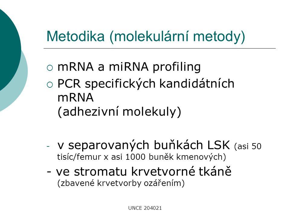 UNCE 204021 Metodika (molekulární metody)  mRNA a miRNA profiling  PCR specifických kandidátních mRNA (adhezivní molekuly) - v separovaných buňkách