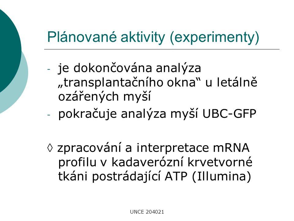 """UNCE 204021 Plánované aktivity (experimenty) - je dokončována analýza """"transplantačního okna"""" u letálně ozářených myší - pokračuje analýza myší UBC-GF"""
