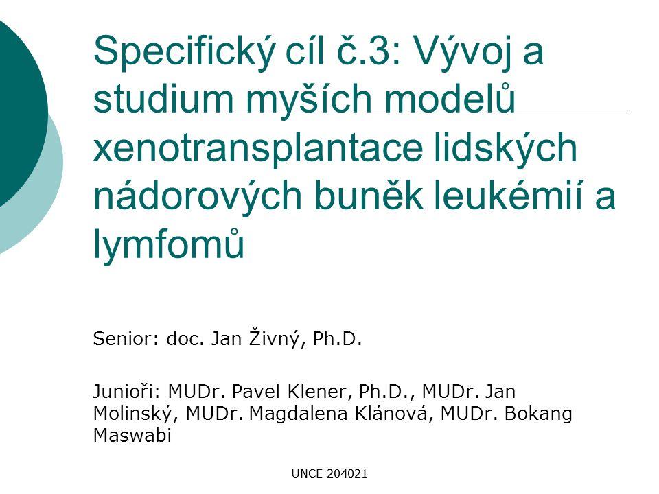 UNCE 204021 Specifický cíl č.3: Vývoj a studium myších modelů xenotransplantace lidských nádorových buněk leukémií a lymfomů Senior: doc. Jan Živný, P