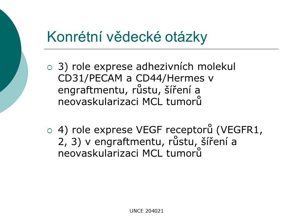 UNCE 204021 Konrétní vědecké otázky  3) role exprese adhezivních molekul CD31/PECAM a CD44/Hermes v engraftmentu, růstu, šíření a neovaskularizaci MC