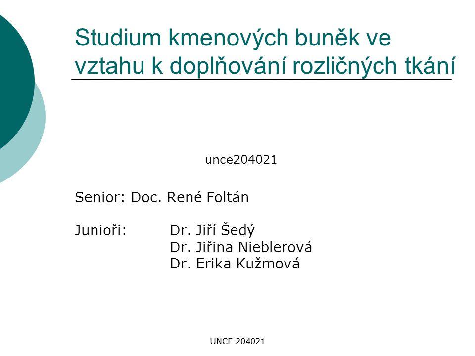 UNCE 204021 Studium kmenových buněk ve vztahu k doplňování rozličných tkání Senior: Doc. René Foltán Junioři: Dr. Jiří Šedý Dr. Jiřina Nieblerová Dr.