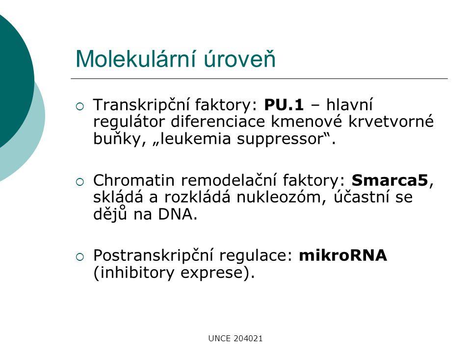 UNCE 204021 Medicínská úroveň  Hematologické malignity: AML, CML, MDS, CLL – role vybraných molekul v downregulaci PU.1 (prognostický význam)  Epigenetická terapie (5-AZA u MDS): ovlivňuje krvetvorbu mechanizmem odblokování exprese některých tumor supresorových genů (např.