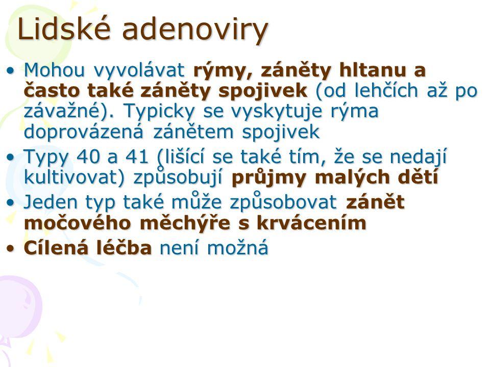 Lidské adenoviry Mohou vyvolávat rýmy, záněty hltanu a často také záněty spojivek (od lehčích až po závažné). Typicky se vyskytuje rýma doprovázená zá