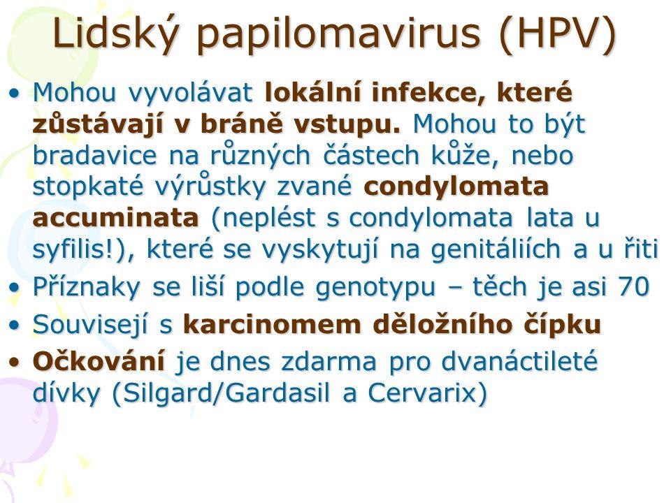 Lidský papilomavirus (HPV) Mohou vyvolávat lokální infekce, které zůstávají v bráně vstupu. Mohou to být bradavice na různých částech kůže, nebo stopk