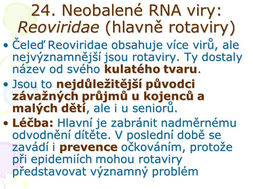24. Neobalené RNA viry: Reoviridae (hlavně rotaviry) Čeleď Reoviridae obsahuje více virů, ale nejvýznamnější jsou rotaviry. Ty dostaly název od svého