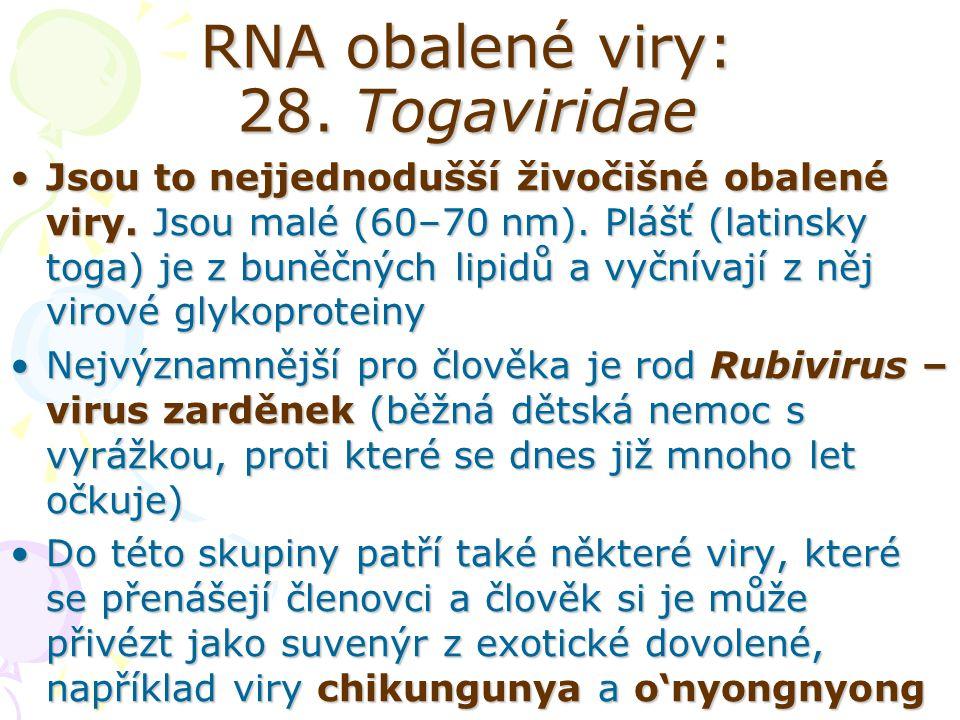 RNA obalené viry: 28. Togaviridae Jsou to nejjednodušší živočišné obalené viry. Jsou malé (60–70 nm). Plášť (latinsky toga) je z buněčných lipidů a vy