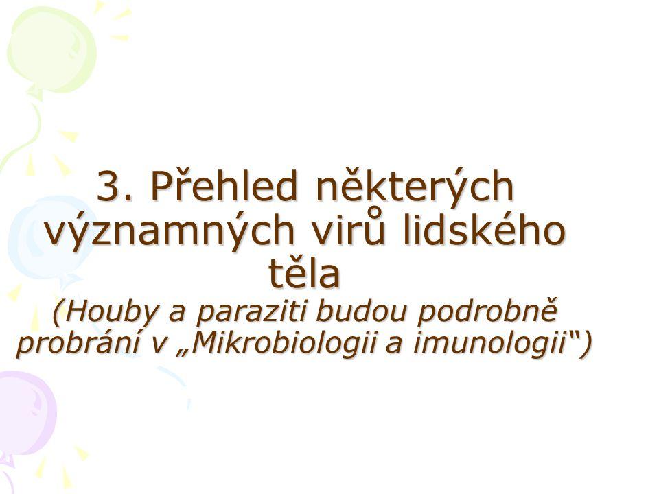"""3. Přehled některých významných virů lidského těla (Houby a paraziti budou podrobně probrání v """"Mikrobiologii a imunologii"""")"""