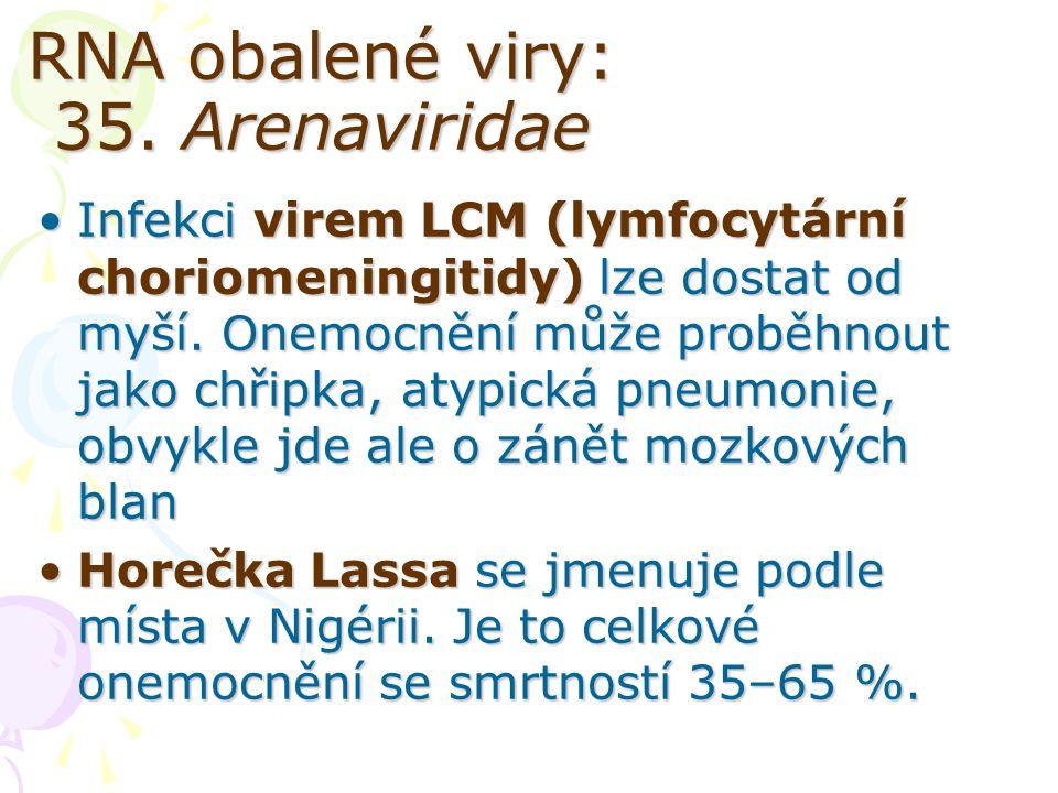 RNA obalené viry: 35. Arenaviridae Infekci virem LCM (lymfocytární choriomeningitidy) lze dostat od myší. Onemocnění může proběhnout jako chřipka, aty