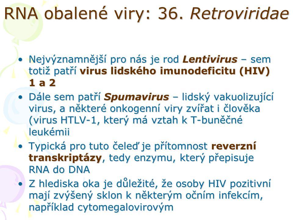 RNA obalené viry: 36. Retroviridae Nejvýznamnější pro nás je rod Lentivirus – sem totiž patří virus lidského imunodeficitu (HIV) 1 a 2Nejvýznamnější p