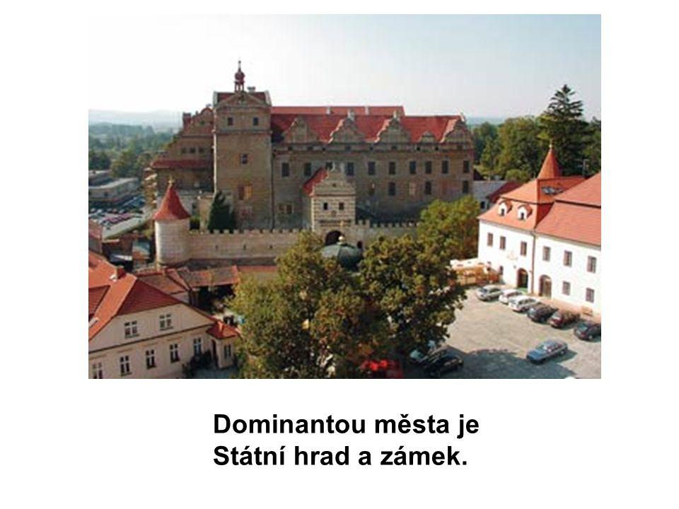 Dominantou města je Státní hrad a zámek.