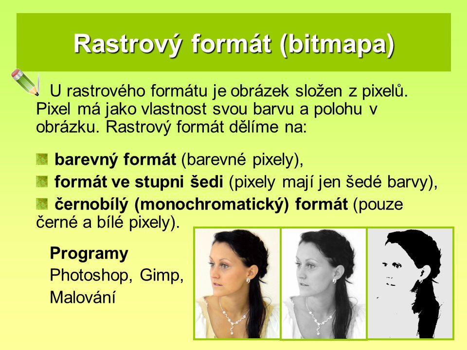 Rastrový formát (bitmapa) U rastrového formátu je obrázek složen z pixelů.