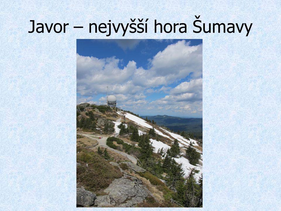 Javor – nejvyšší hora Šumavy