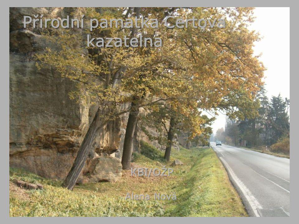 Čertova kazatelna - základní údaje Přírodní památka se nachází nad údolní nivou řeky Mže při silnici z Plzně do Radčic v nadmořské výšce 310 – 340 mPřírodní památka se nachází nad údolní nivou řeky Mže při silnici z Plzně do Radčic v nadmořské výšce 310 – 340 m rozloha je 2,40 harozloha je 2,40 ha Jedná se o skalní masív s příkrými, až 22 m vysokými stěnamiJedná se o skalní masív s příkrými, až 22 m vysokými stěnami Z důvodu ochrany skalních stěn byla Čertova kazatelna v roce 1974 vyhlášena za chráněné územíZ důvodu ochrany skalních stěn byla Čertova kazatelna v roce 1974 vyhlášena za chráněné území Na základě vyhlášky Rady města Plzně č.