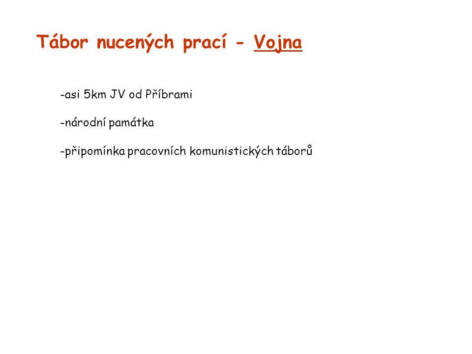 Tábor nucených prací - Vojna -asi 5km JV od Příbrami -národní památka -připomínka pracovních komunistických táborů