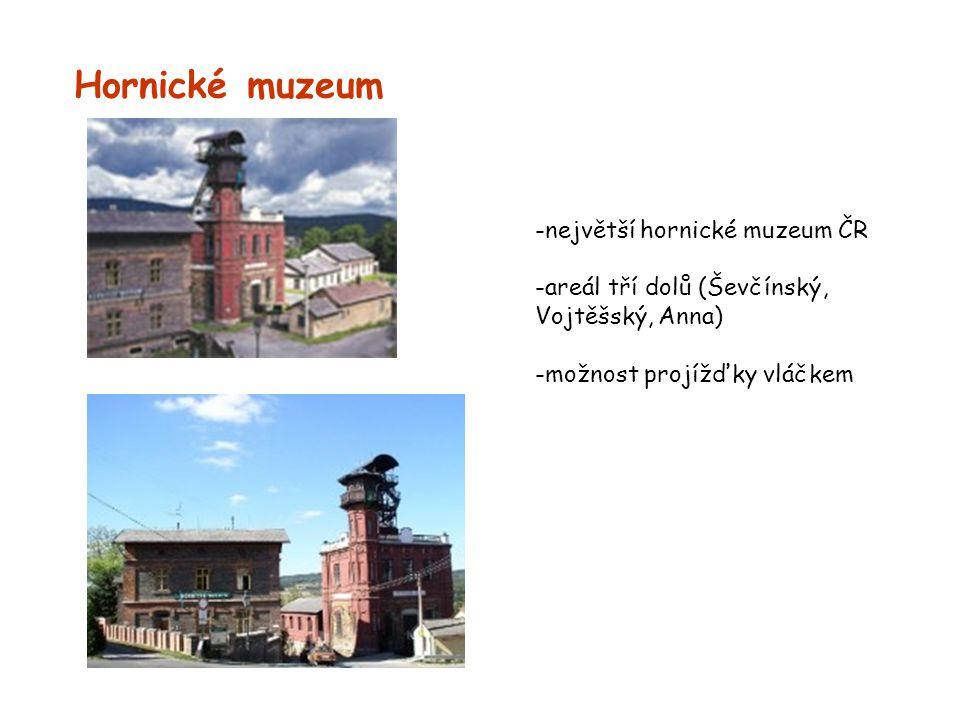 -největší hornické muzeum ČR -areál tří dolů (Ševčínský, Vojtěšský, Anna) -možnost projížďky vláčkem Hornické muzeum