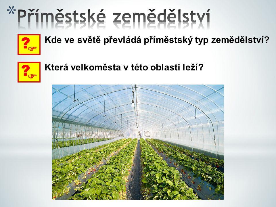  ? Kde ve světě převládá příměstský typ zemědělství?  ? Která velkoměsta v této oblasti leží?