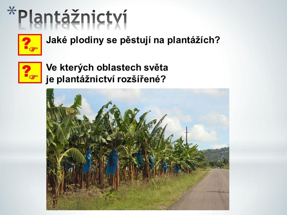  ? Jaké plodiny se pěstují na plantážích?  ? Ve kterých oblastech světa je plantážnictví rozšířené?