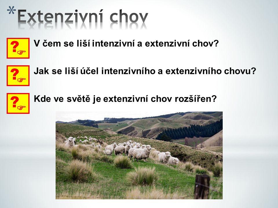  ? V čem se liší intenzivní a extenzivní chov?  ? Jak se liší účel intenzivního a extenzivního chovu?  ? Kde ve světě je extenzivní chov rozšířen?
