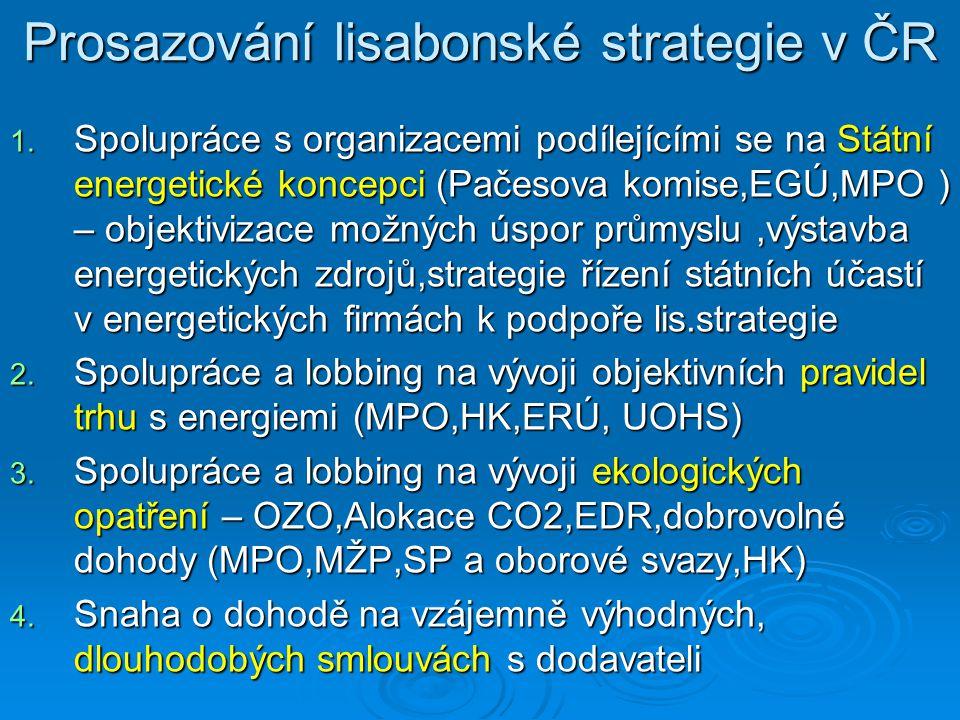 Prosazování lisabonské strategie v ČR 1.