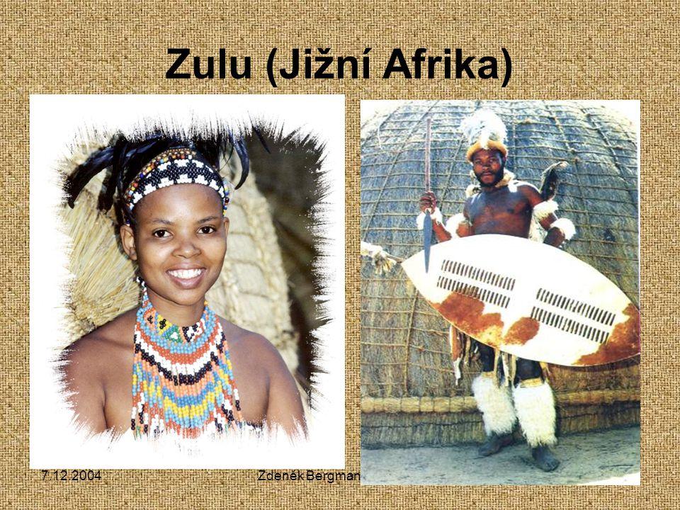 7.12.2004Zdeněk Bergman, G Teplice Zulu (Jižní Afrika)