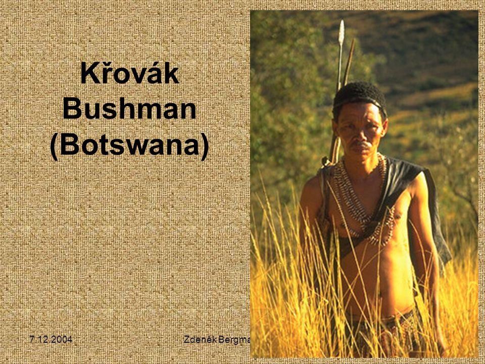 7.12.2004Zdeněk Bergman, G Teplice Křovák Bushman (Botswana)