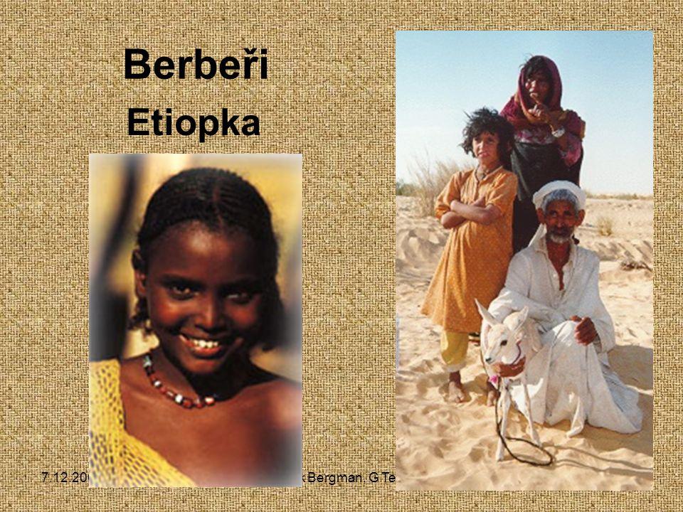 7.12.2004Zdeněk Bergman, G Teplice Nilo-saharská rodina - Hamité 140 jazyků 10 mil.