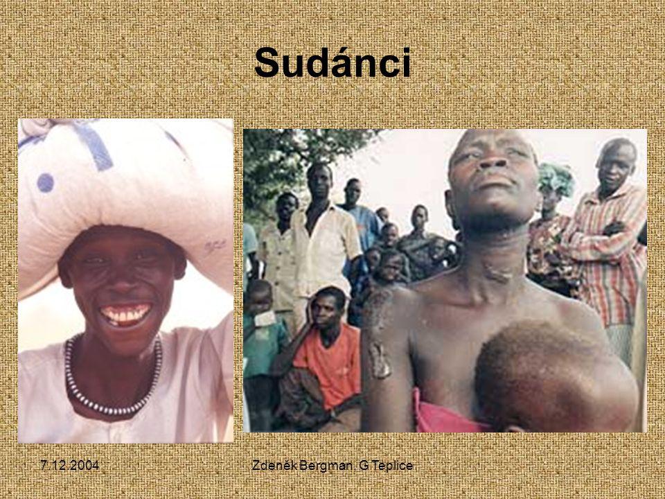 7.12.2004Zdeněk Bergman, G Teplice Nigero-kordofanská rodina 1000 jazyků Bantu Svahilština Zulu Yoruba 200 mil.