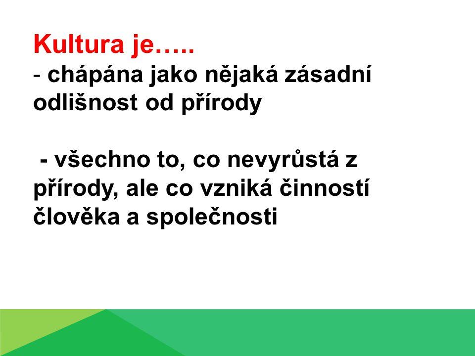 Kultura je…..