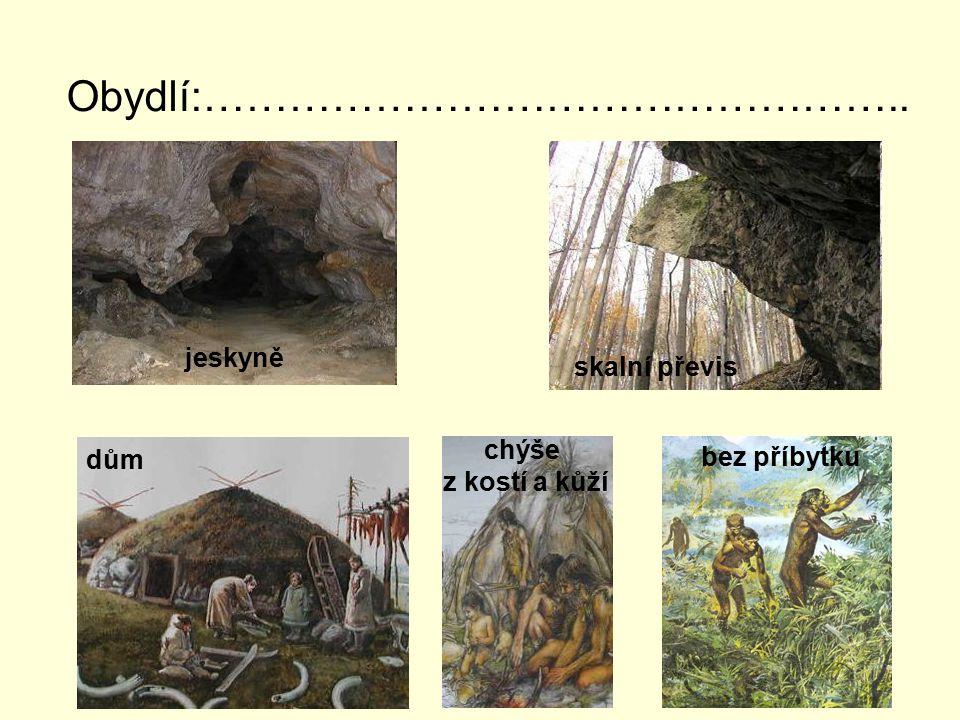 Obydlí:………………………………………….. dům chýše z kostí a kůží bez příbytku jeskyně skalní převis