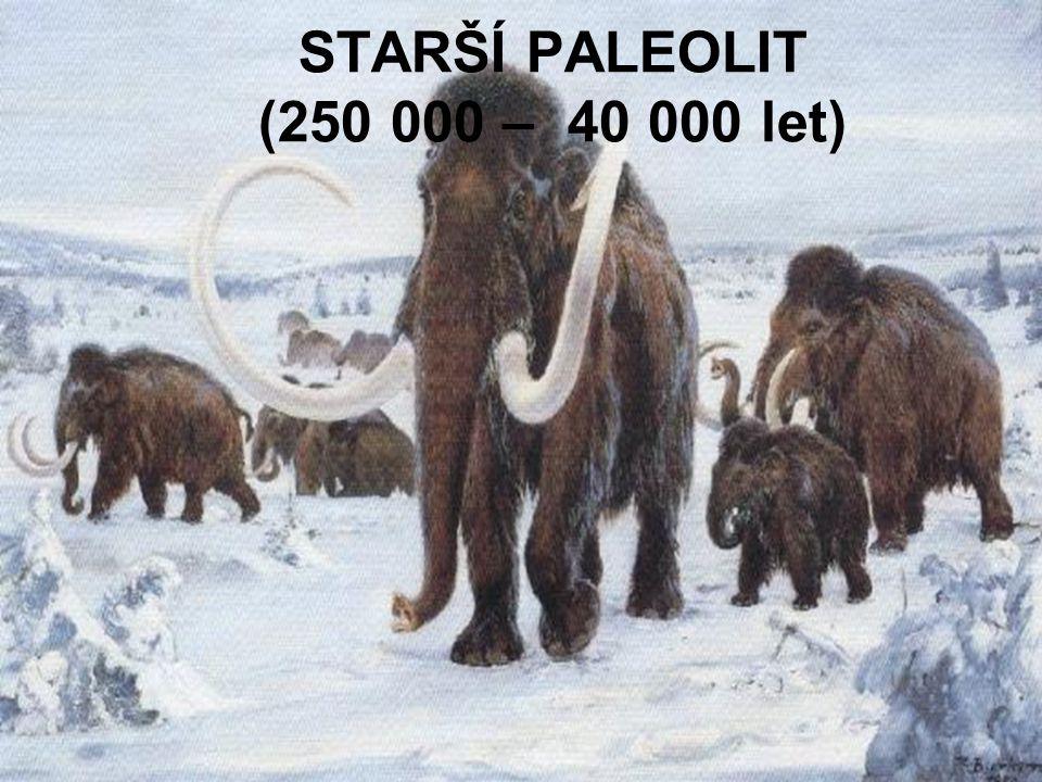 STARŠÍ PALEOLIT (250 000 – 40 000 let)