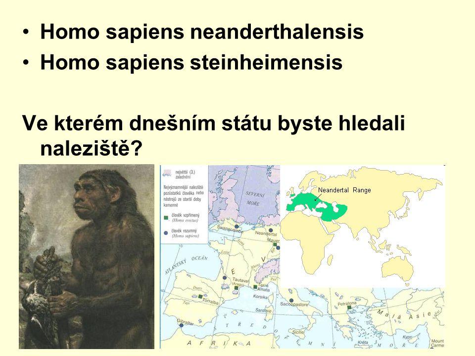 Homo sapiens neanderthalensis Homo sapiens steinheimensis Ve kterém dnešním státu byste hledali naleziště?
