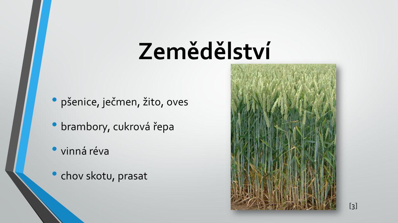 Zemědělství pšenice, ječmen, žito, oves brambory, cukrová řepa vinná réva chov skotu, prasat [3][3]