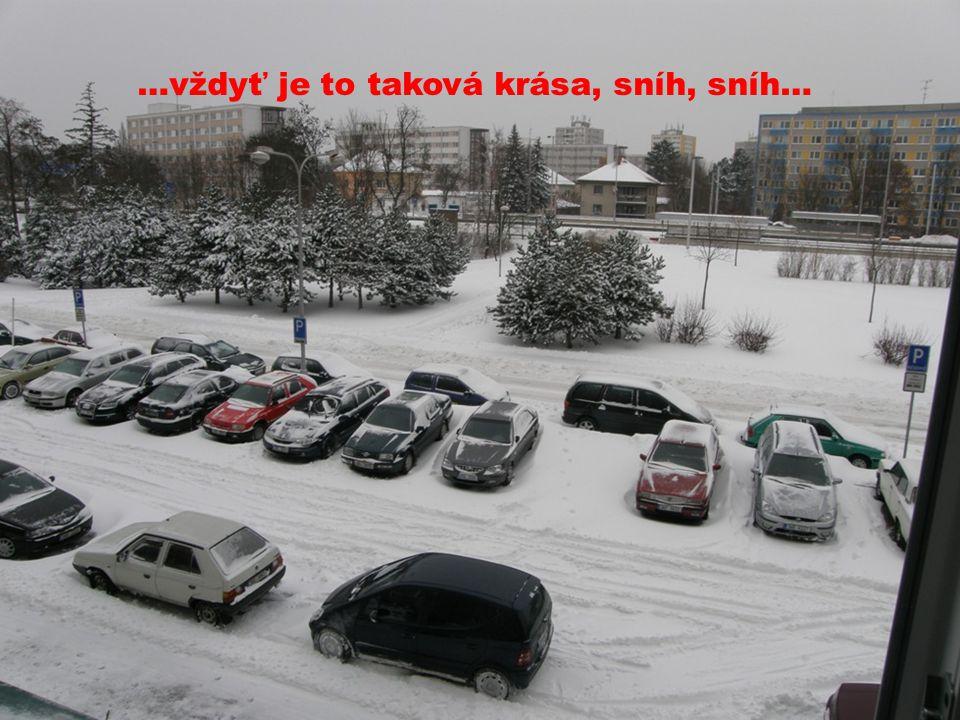…vždyť je to taková krása, sníh, sníh…