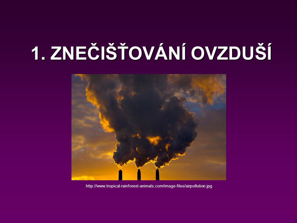 1. ZNEČIŠŤOVÁNÍ OVZDUŠÍ http://www.tropical-rainforest-animals.com/image-files/airpollution.jpg