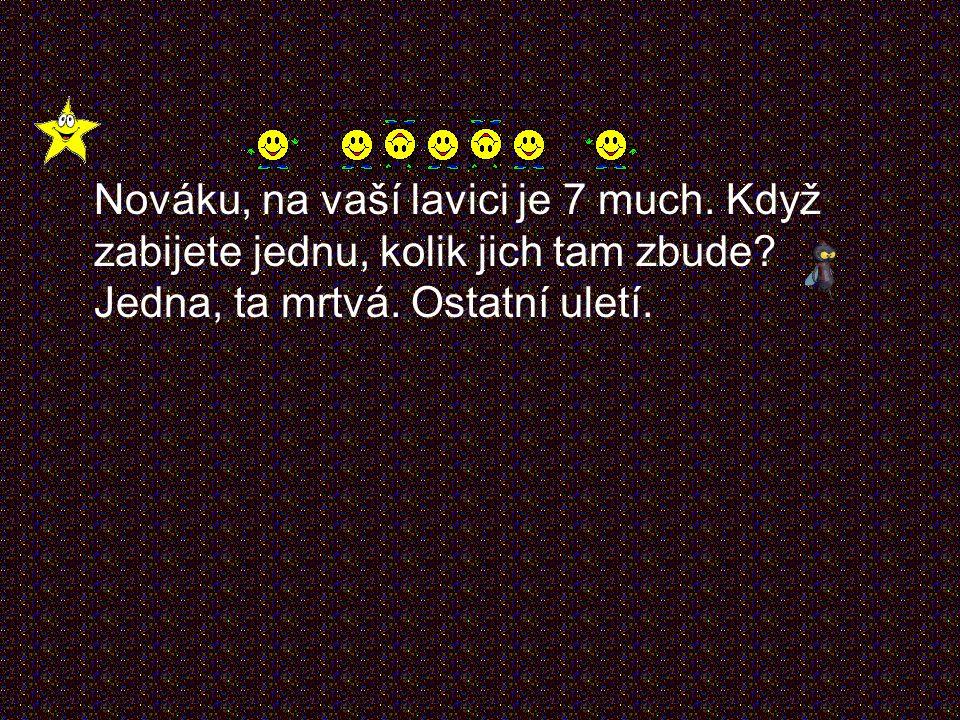Pepíček má ve škole skloňovat slovo ``houska``. Kdo, co: Houska S kým, čím: Se salámem Komu, čemu: Mně!
