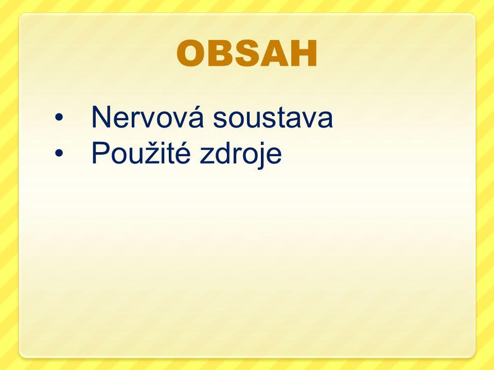 OBSAH Nervová soustava Použité zdroje