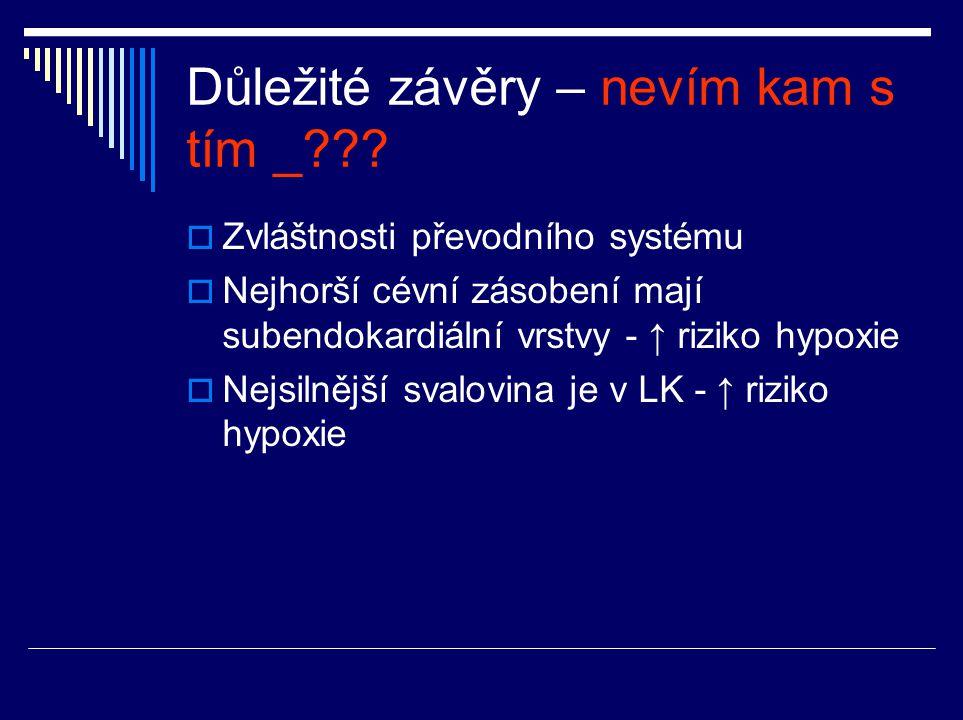 Důležité závěry – nevím kam s tím _??.