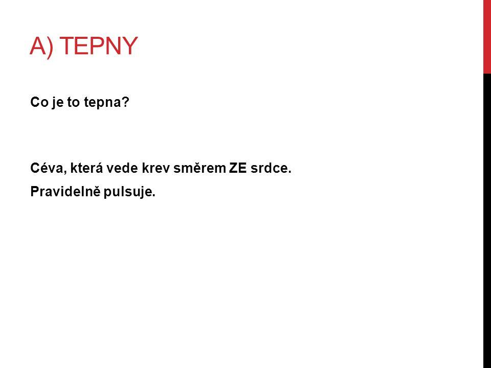 A) TEPNY Céva, která vede krev směrem ZE srdce. Pravidelně pulsuje. Co je to tepna?