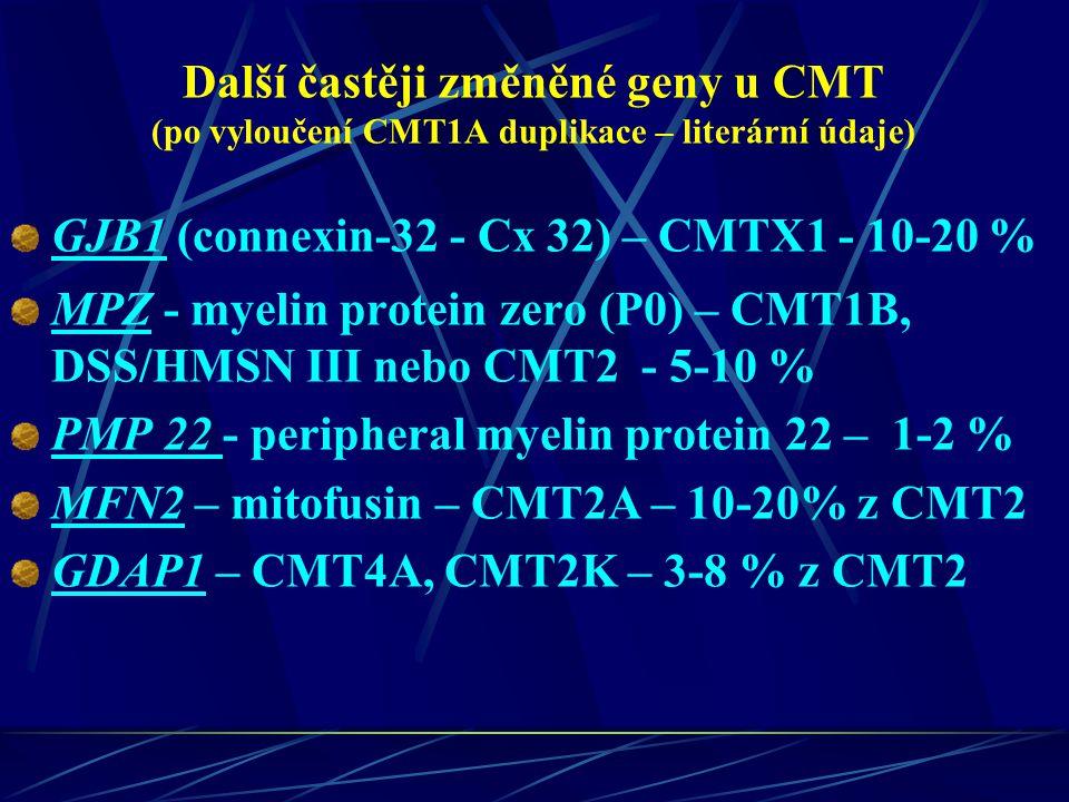 Další častěji změněné geny u CMT (po vyloučení CMT1A duplikace – literární údaje) GJB1 (connexin-32 - Cx 32) – CMTX1 - 10-20 % MPZ - myelin protein ze